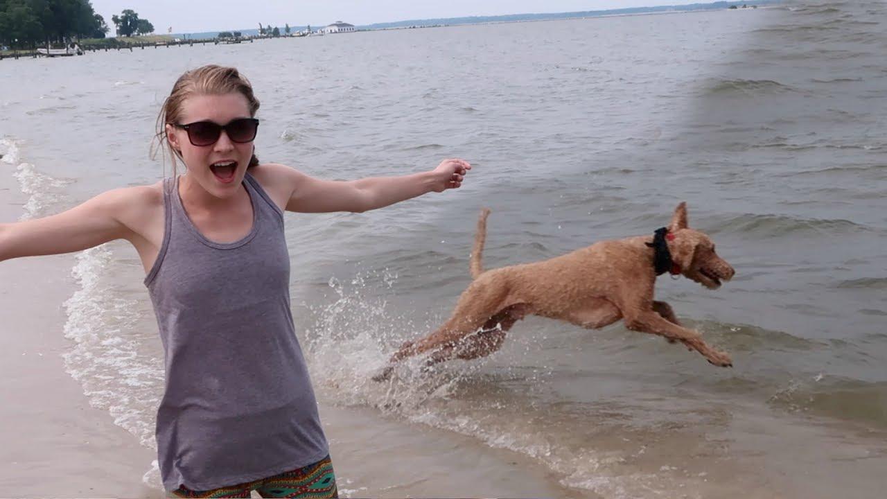 Hot Amateur Woman Spy Cam On The Beach
