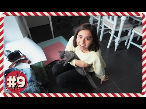 VLOGMAS DIA 9: Está quase! | SofiaBBeauty