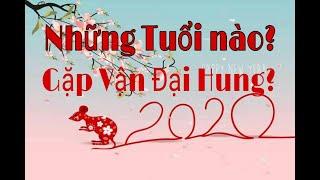 NHỮNG TUỔI PHẠM THÁI TUẾ ĐẠI HUNG NĂM 2020!_(XEM DỤNG THẦN BÁT TỰ CHO 12 CON GIÁP)