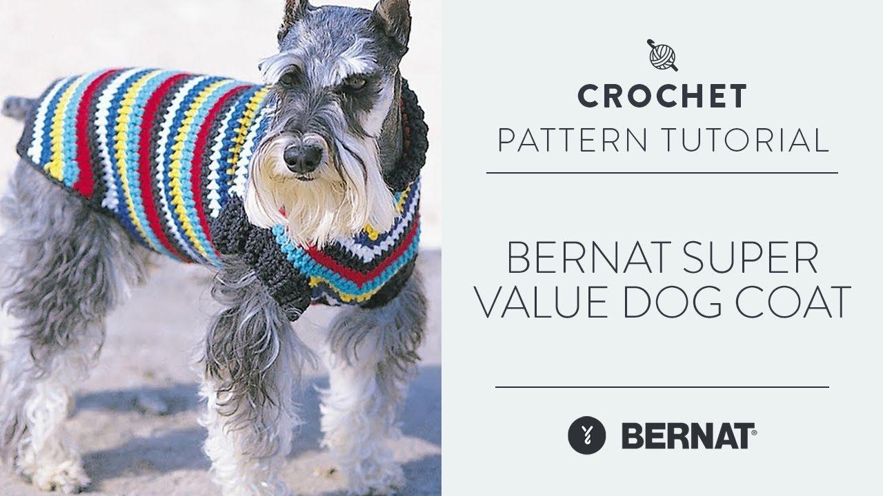 Bernat super value dog coat youtube jeuxipadfo Image collections