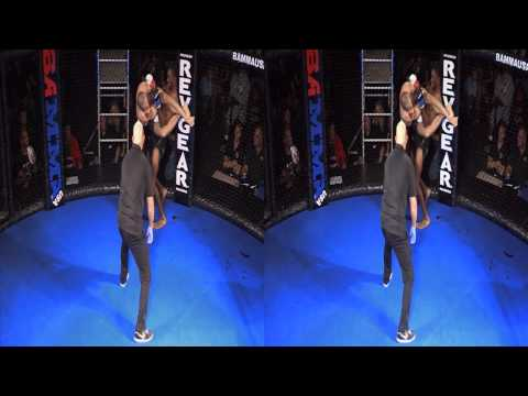 3D Fights: MMA (3D Version)