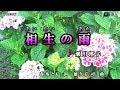瀬川瑛子【相生の雨】カラオケ