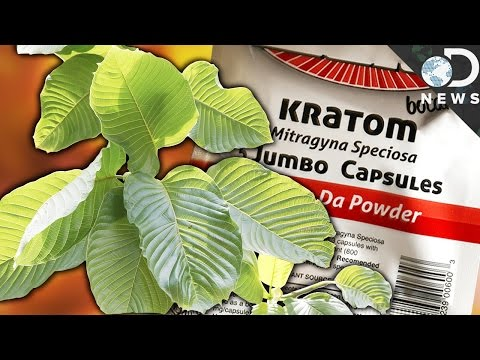 DEA Looks to Ban Kratom, a Drug that Could Lessen Addiction