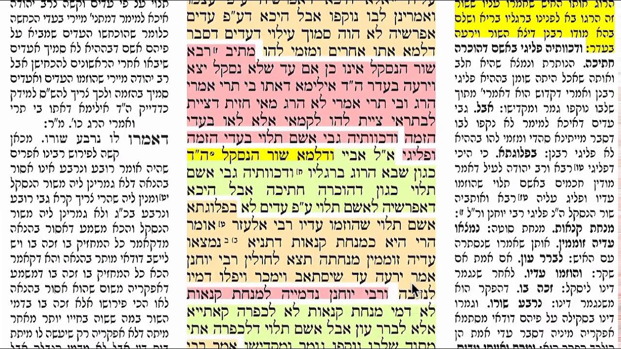 הדף היומי מסכת כריתות דף כד Dafyomi Kereisos daf 24