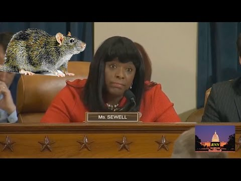 3/20/17 House Intelligence Committee: SHIFF HANDS OFF BALL TO SEWELL (SHE FUMBLES) again