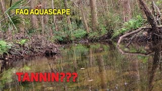 Gambar cover FAQ - Tanin Pada Aquascape, Manfaat dan Pencegahan