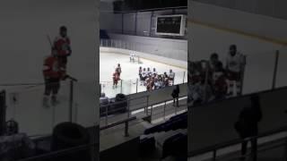 Массовая драка в женском хоккее / Women