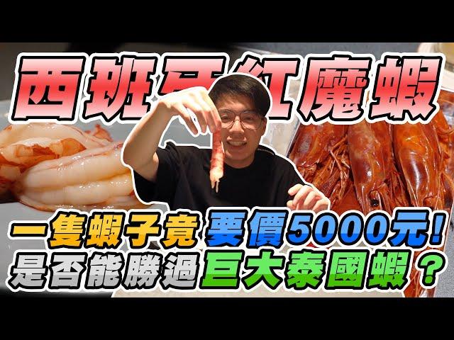 一盒六隻要價三萬新台幣的蝦子?被譽為世界上最貴最美味的神級紅魔蝦吃起來如何?【有錢人的世界 EP5】