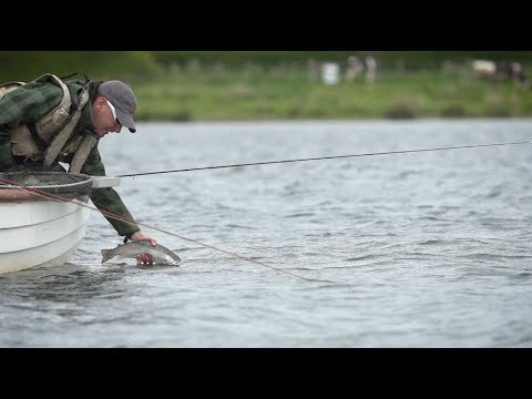 Buzzer Fly Fishing Tips - RIO Products