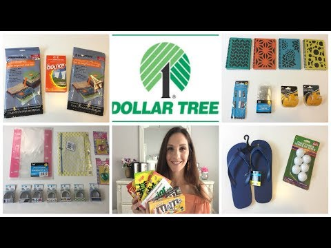 GIRL I WENT TO THE DOLLAR TREE AGAIN | DT Haul