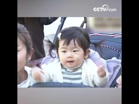 В Японии тюлень, умеющий держать зонт, стал звездой в Интернете CCTV Русский