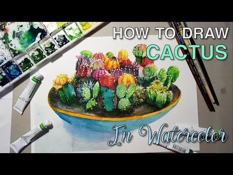 How to draw cactus (watercolor)