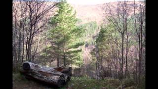 Dog Falls, Glen Affric, Scotland