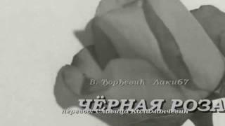 ЧЁРНАЯ РОЗА ... В. Ђорђевић - Laki67 (на русском языке)