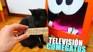 LA TELEVISIÓN COMEGATOS