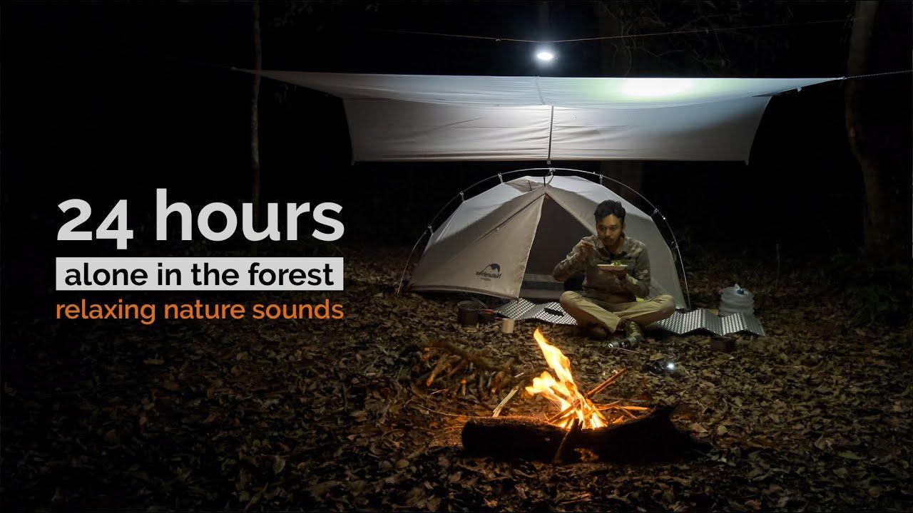 Solo Camping: 24 Jam di dalam hutan, api unggun, kopi dan singkong goreng, masak makan malam, ASMR