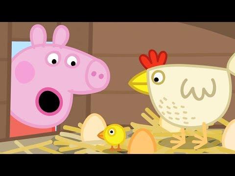 Peppa Wutz 🐣 Die Hühner von Oma Wutz | Peppa Pig Deutsch Neue Folgen | Cartoons für Kinder