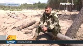 Объявили о первых результатах операции «Янтарь» в Ровенской области