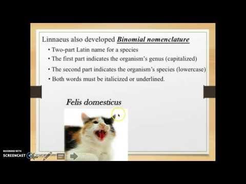 Day 2 - Binomial Nomenclature