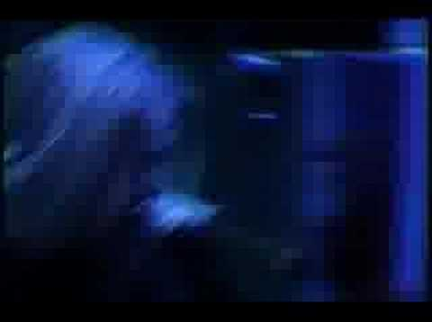 Arch Enemy - 05 - The Immortal (Live on 04-05-2002