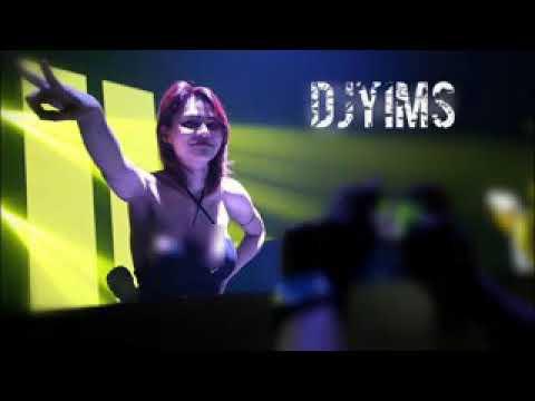 DJ Yasmin vs DJ Butterfly (Terbaru) Remix
