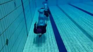 ぽんたドルフィンスイムクラブ http://ponta-dolphinswim.com/