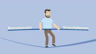 DOSIMIRROR Stressmodell