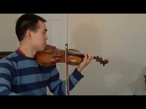 Harry Potter Hedwig Theme on Violin