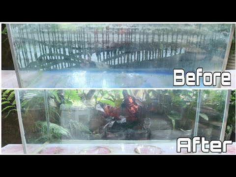 How To Remove Water Marks / Calcium On Aquarium Or Tanks   Very Easy Way To Clean Your Aquarium
