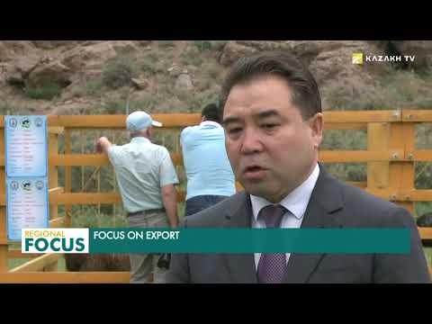 Kazakhstan's export potential