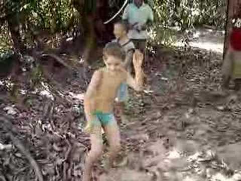 Lesbian safari video sex