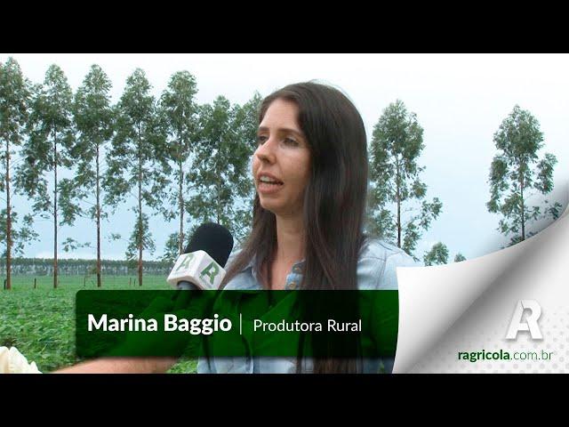 ENTREVISTA PRODUTORA RURAL | MARINA BAGGIO | RALLY MULHERES DO AGRO