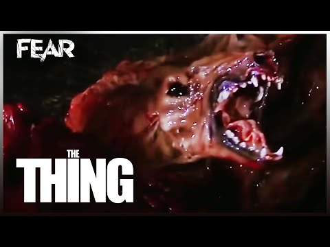 The Thing Dog Transformation   The Thing (1982)