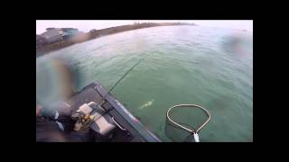 Detroit River Walleye Fishing April 8th, 2015