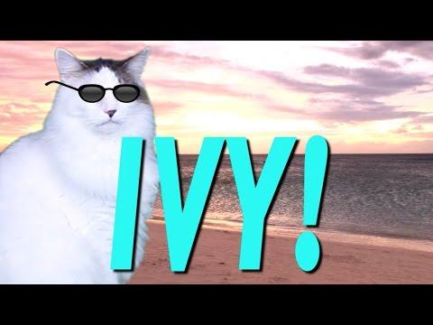 HAPPY BIRTHDAY IVY! - EPIC CAT Happy Birthday Song