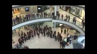 An unforgettable flash mob sings
