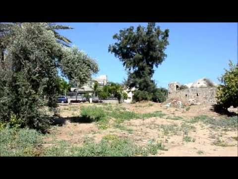 Visiting the mosque of Zarnuga