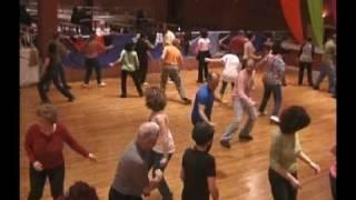 Mecholot Damar - Rafi Ziv - מחולות דמאר - רפי זיו - ריקודי עם