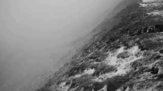 Stuzha - Lilac Polar Darkness