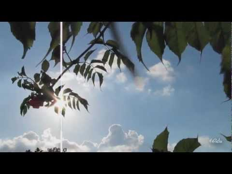 Origin - Sunstroke (LTN Remix) [Music Video] [Alter Ego]