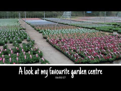 A look at my favourite garden centre