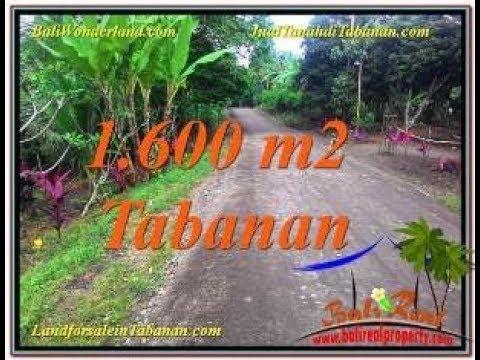 TJTB337   Land for sale in Tabanan Bali