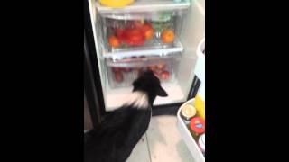 Piglets apple drawer 2