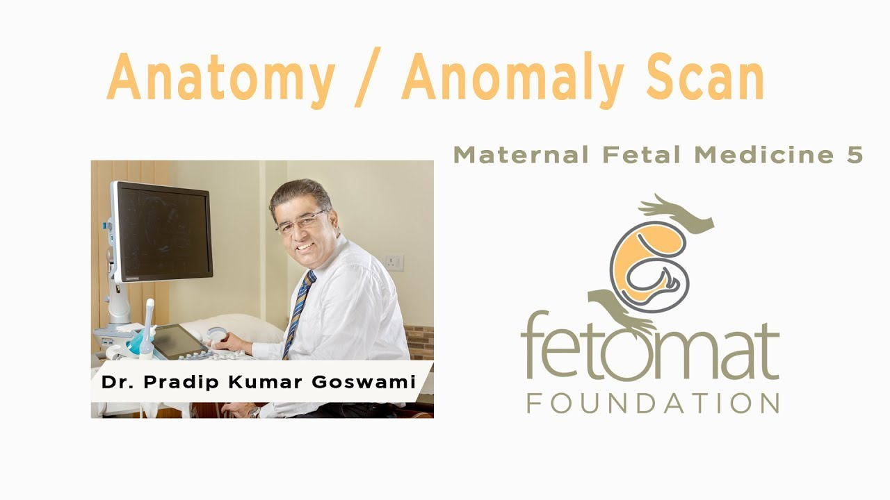Anatomy / Anomaly scan. Maternal Fetal Medicine 5 - YouTube