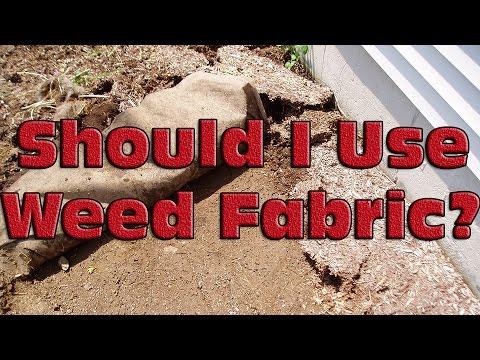 Should I Use Landscape Fabric Youtube