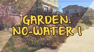 Garden: No-Water I