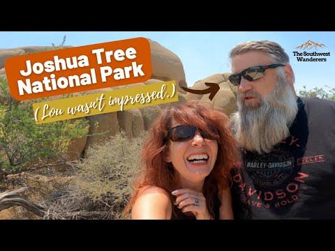 A Short Wander through Joshua Tree