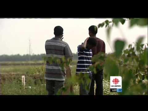 Alberta Somali Community Center Launches Innovative Crime Prevention Initiatives
