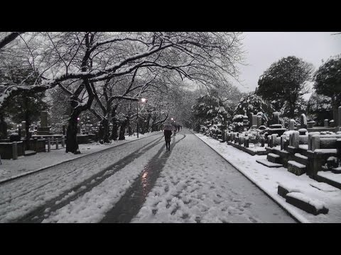 東京 谷中と上野公園の雪景色 2 Yanaka and Ueno Park of snow, Taito, Tokyo