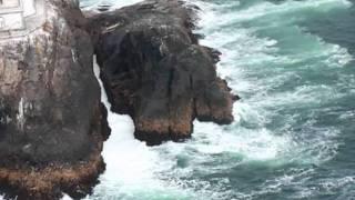 Rio Reiser - Übers Meer